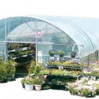 greenhouse retail toko bunga