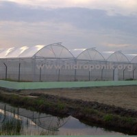 greenhouse indonesia